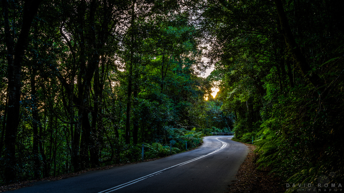 The road from Mt. Irvine