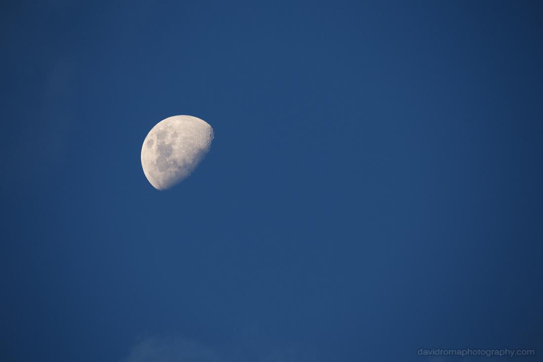 Sigma 150-600mm Moon test shot