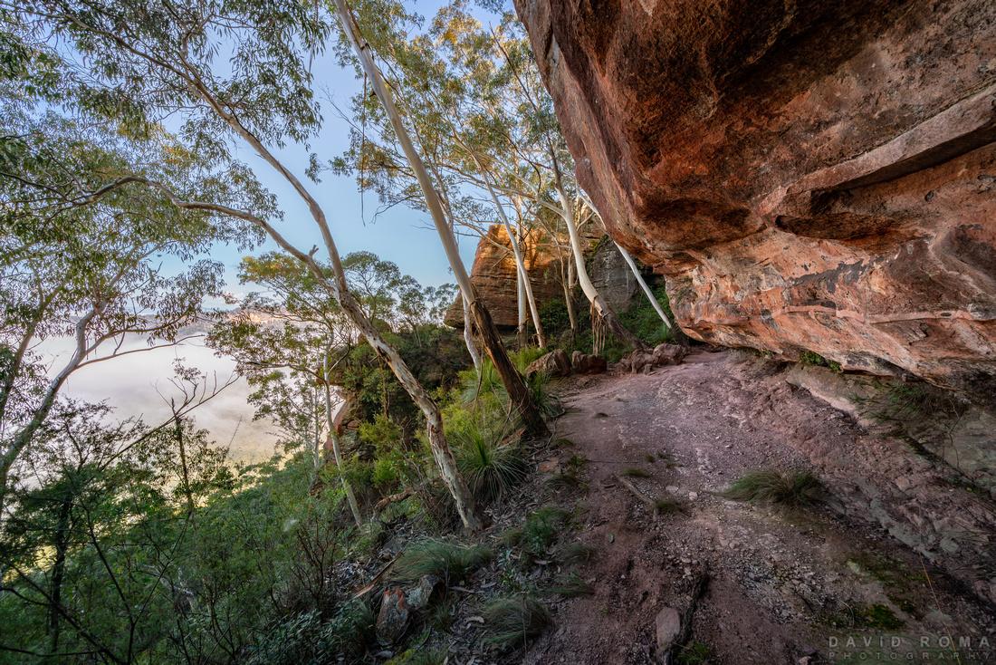 Below Mitchell Ridge
