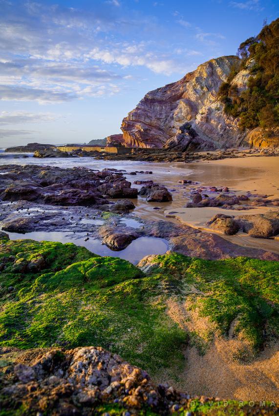 Coastal garden of Eden