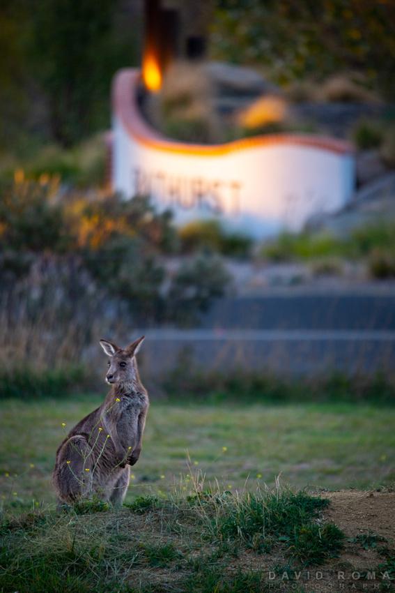 Bathurst Australia