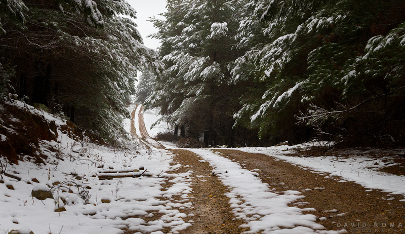 Road to snowhere